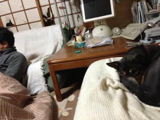 image-20131216203746.png